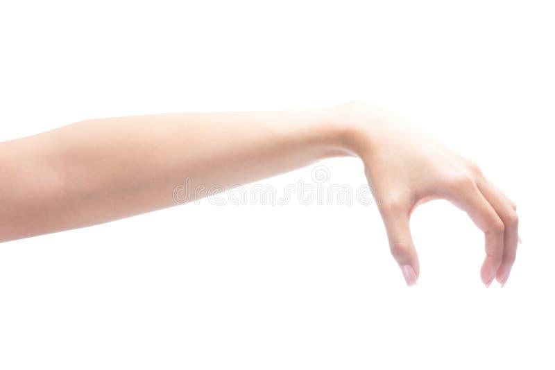 Mão do gesto da mulher que guarda o objeto foto de stock