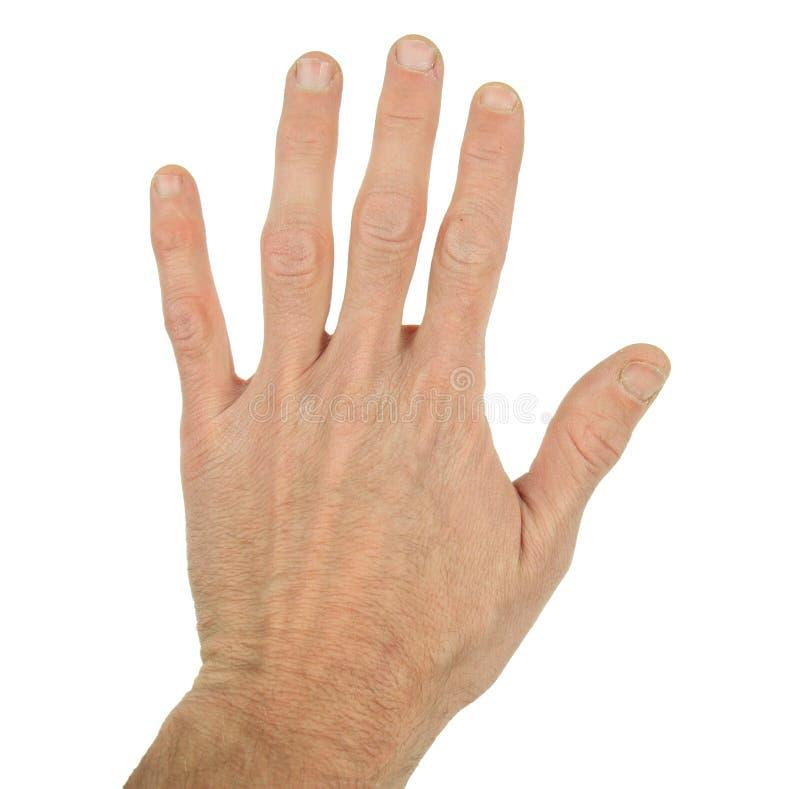 A mão do homem fotos de stock royalty free