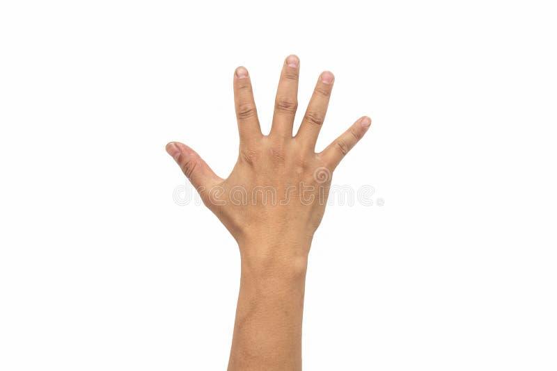 A mão do homem abre a palma da mão fotos de stock royalty free