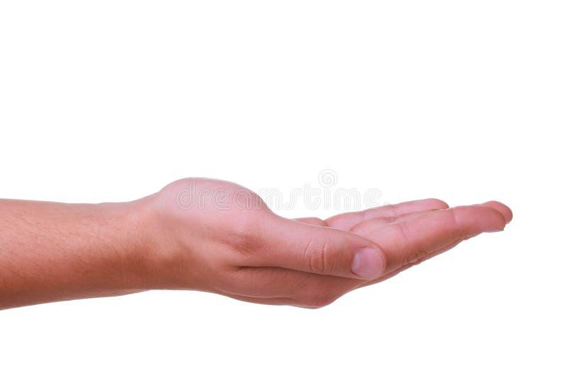 Mão do homem adequado fotografia de stock