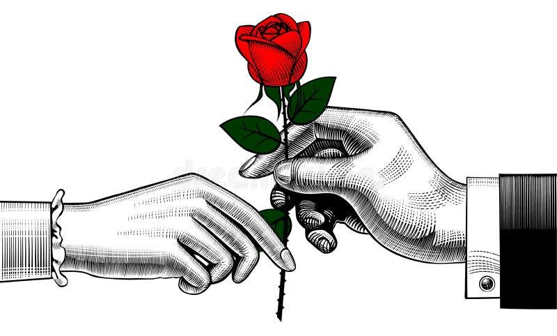 A mão do homem dá uma rosa vermelha à mulher ilustração royalty free