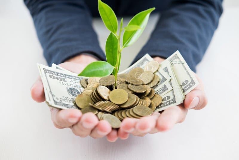 A mão do homem de negócio faz a palma acima com crescimento acima de moedas do dinheiro e de s fotografia de stock royalty free