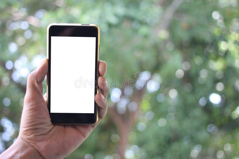 A mão do homem guarda a tela branca vazia do smartphon e tem a bobina imagem de stock royalty free