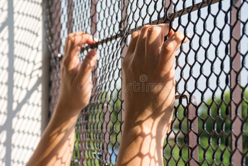 Mão do prisioneiro na cadeia foto de stock royalty free