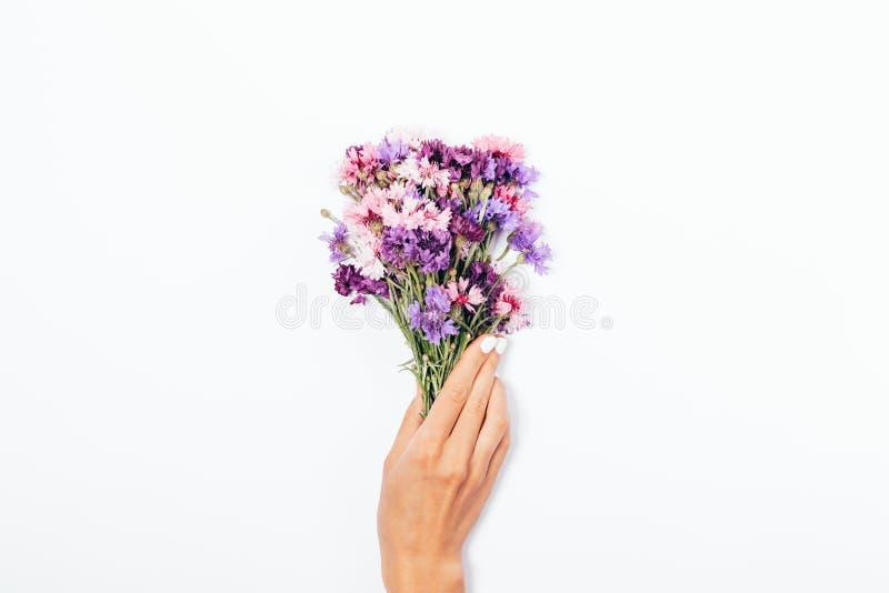Mão do ` s da menina com o tratamento de mãos branco que guarda o ramalhete pequeno fotos de stock