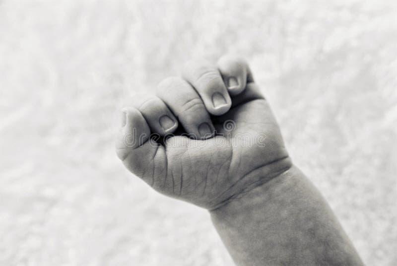 Mão dos bebês imagem de stock