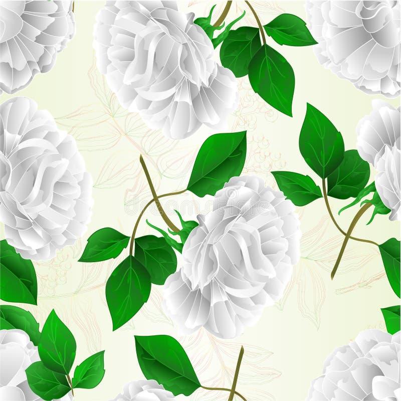 A mão editável da ilustração do vetor do vintage da flor branca da rosa sem emenda da textura e do fundo natural das folhas tira ilustração do vetor