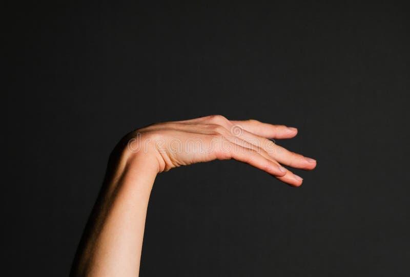 Mão elegante de uma mulher foto de stock