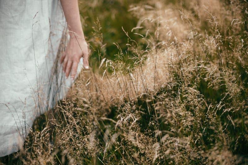 Mão entre ervas e wildflowers no campo Mulher de Boho que anda no campo entre a grama, estilo de vida lento simples Espa?o para o fotos de stock