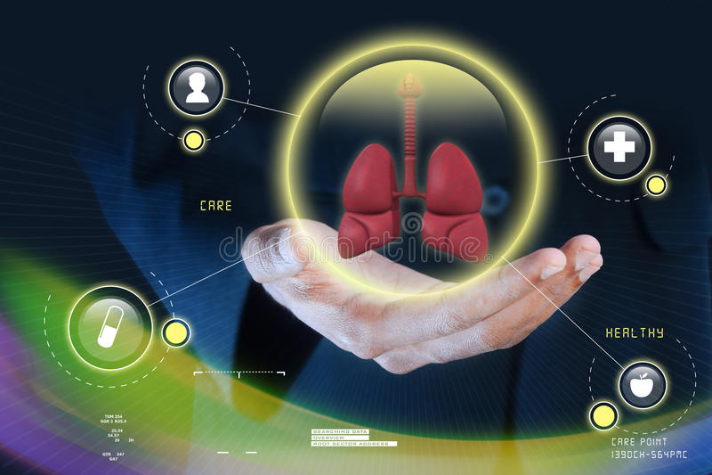 Mão esperta que mostra os pulmões humanos foto de stock