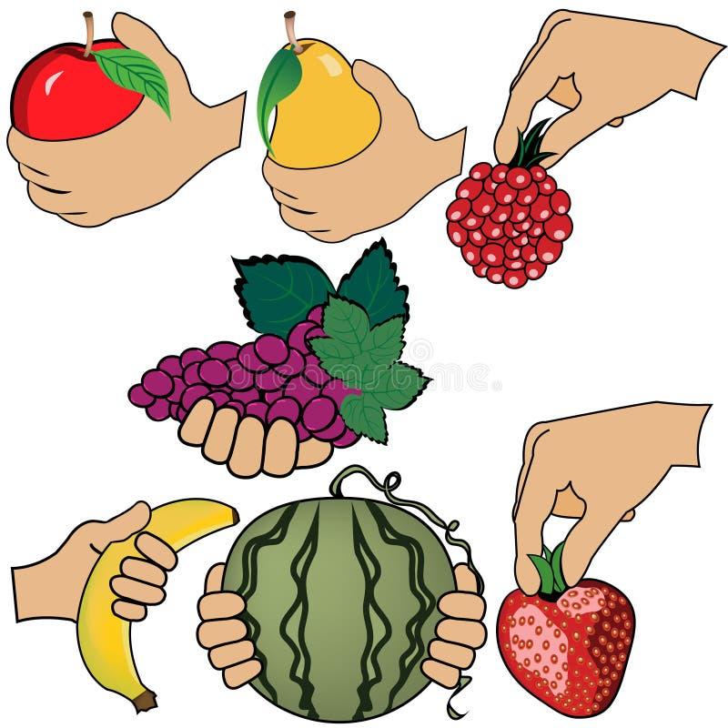 A mão está guardando o fruto ilustração stock