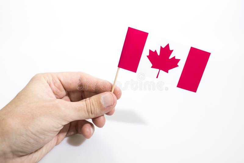 A mão está mantendo a bandeira canadense isolada em um fundo branco imagens de stock royalty free