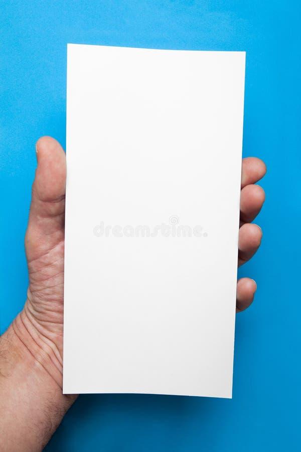 Mão europeia que guarda o inseto vazio do DL da placa fotografia de stock