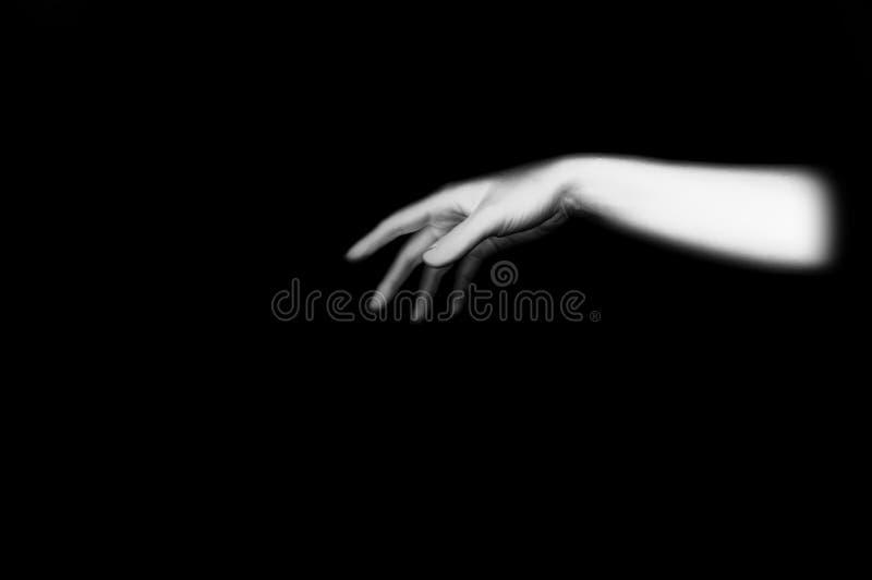 Mão fêmea foto de stock royalty free