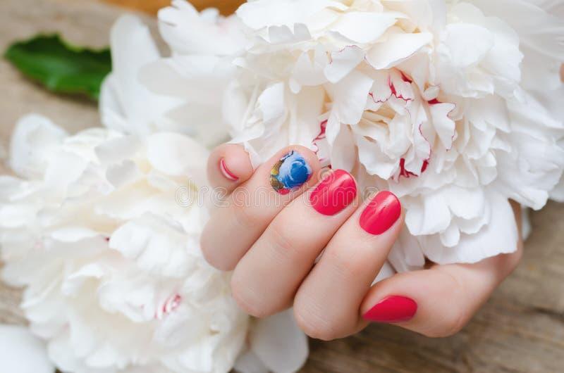 Mão fêmea bonita com projeto vermelho do prego fotografia de stock