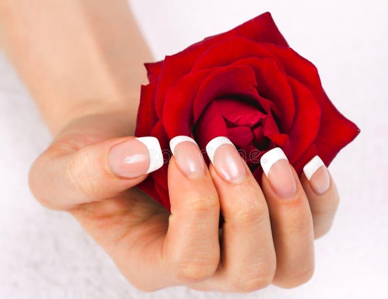 Mão fêmea bonita com tratamento de mãos francês foto de stock royalty free