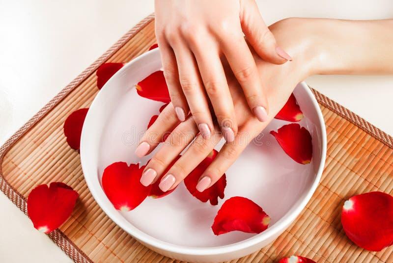 Mão fêmea com cor bege natural na bacia branca com a pétala cor-de-rosa e água vermelhas fotos de stock