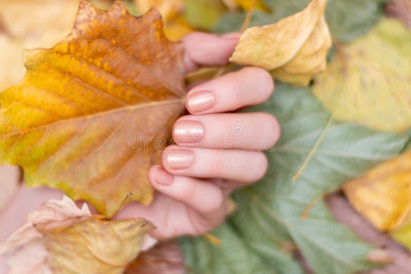 Mão fêmea com desenho das unhas reluzentes com folhas amarelas fotos de stock royalty free