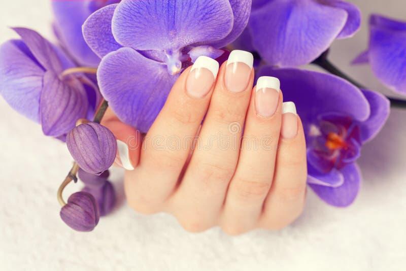 Mão fêmea com tratamento de mãos francês imagem de stock