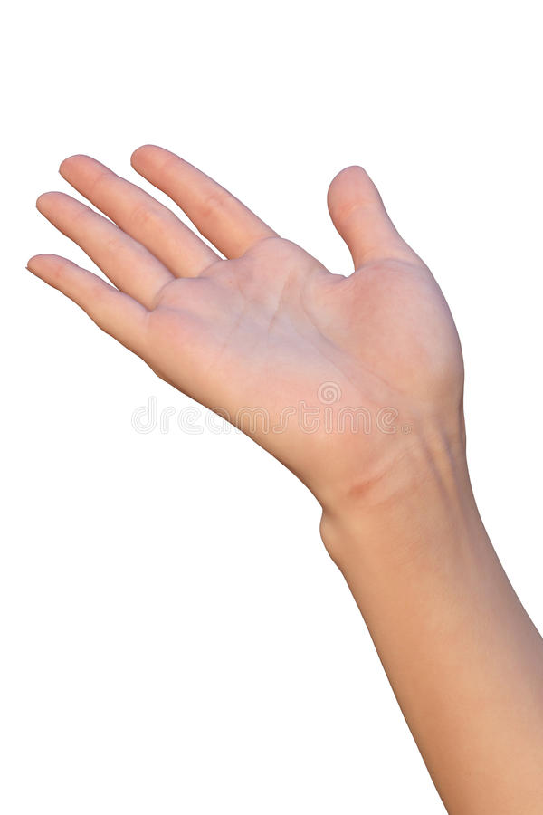 A mão fêmea está recebendo ou está dando foto de stock royalty free