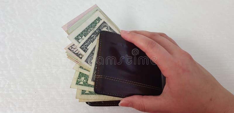 A mão fêmea isolada no fundo branco abre a carteira de couro marrom imagem de stock