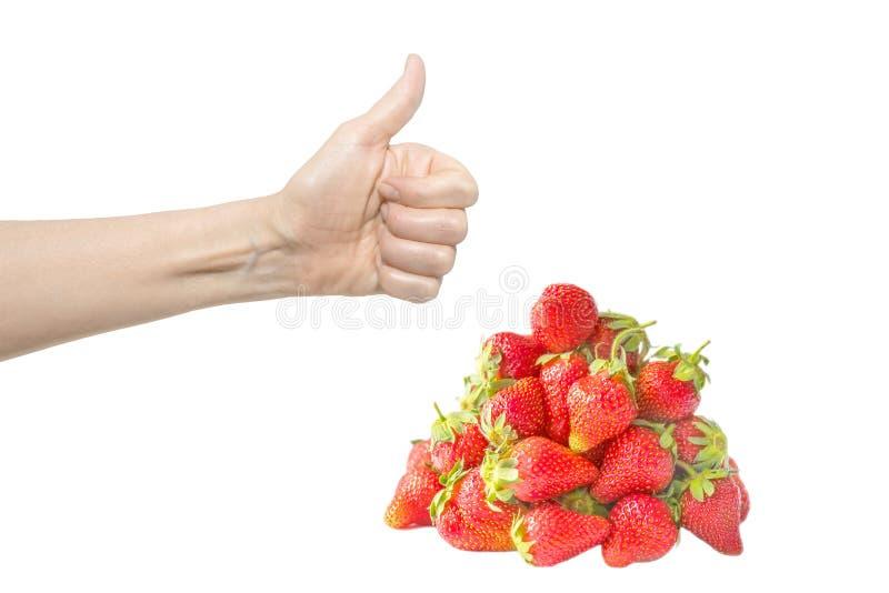 Mão fêmea isolada no fundo branco com a pilha ou o montão fresco vermelho brilhante da morango O polegar acima Conceito da qualid fotos de stock