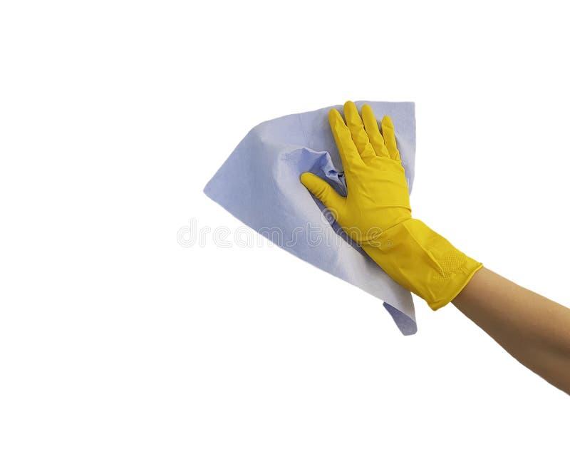 mão fêmea na luva de borracha protetora amarela, pano azul no fundo branco imagens de stock