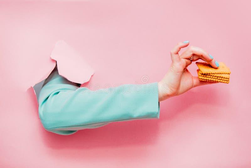 Mão fêmea no casaco azul clássico com cookie fotos de stock