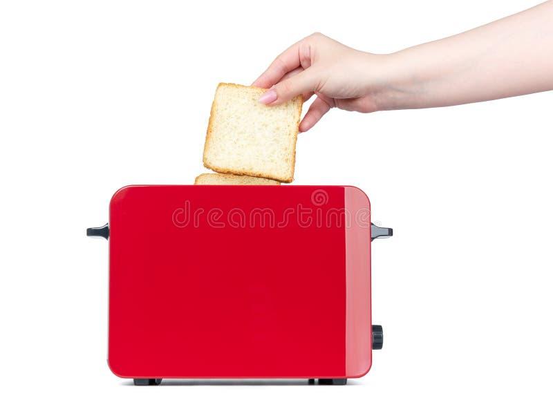 A mão fêmea põe o pão fresco no torradeira vermelho para brindar Isolado no fundo branco O arquivo contem um trajeto ? isola??o foto de stock royalty free