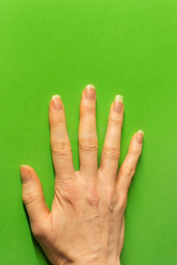 A mão fêmea pressionou contra a parede verde-clara - mínima foto de stock