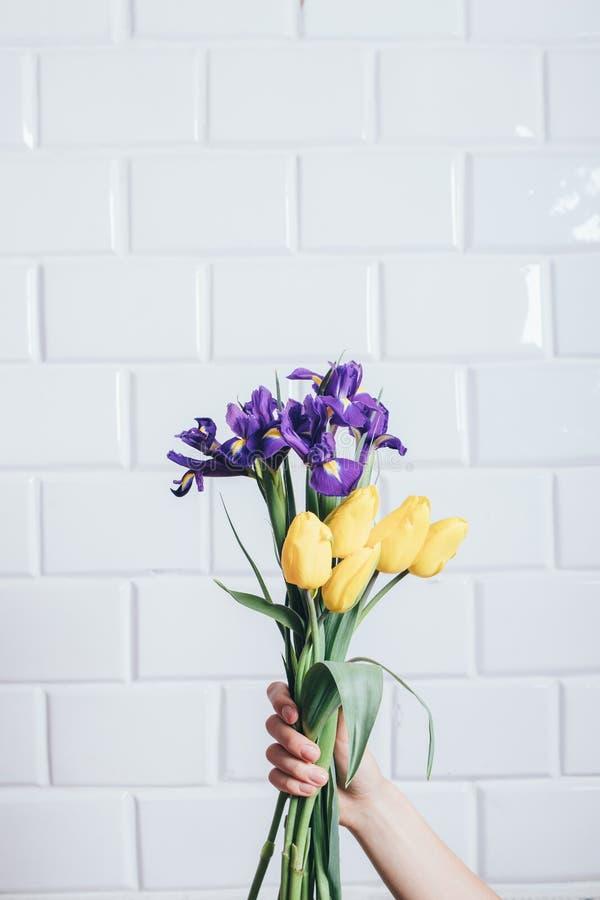 Mão fêmea que guarda a íris e tulipas bonitas imagens de stock