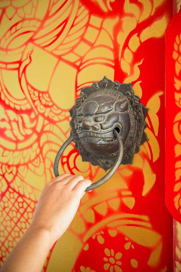 Mão fêmea que puxa a aldrava de porta de bronze da cabeça do leão na madeira pintada fotos de stock