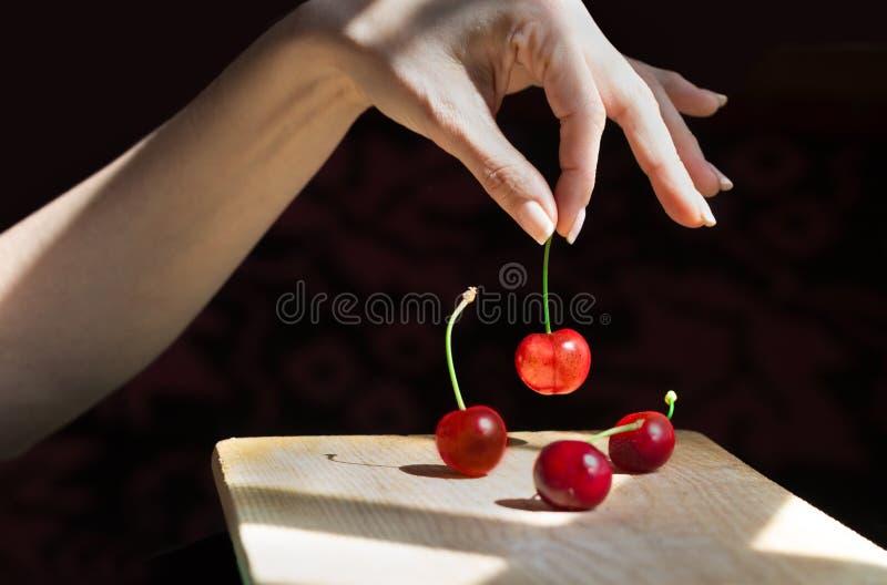 Mão fêmea que seleciona uma cereja fotos de stock royalty free