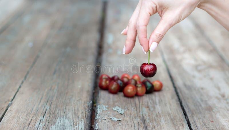 Mão fêmea que seleciona uma cereja foto de stock