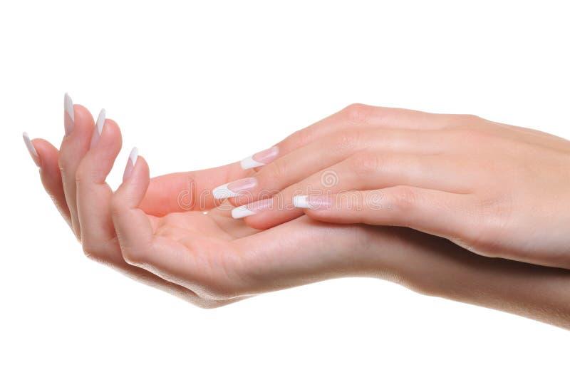 Mão fêmea Well-groomed foto de stock