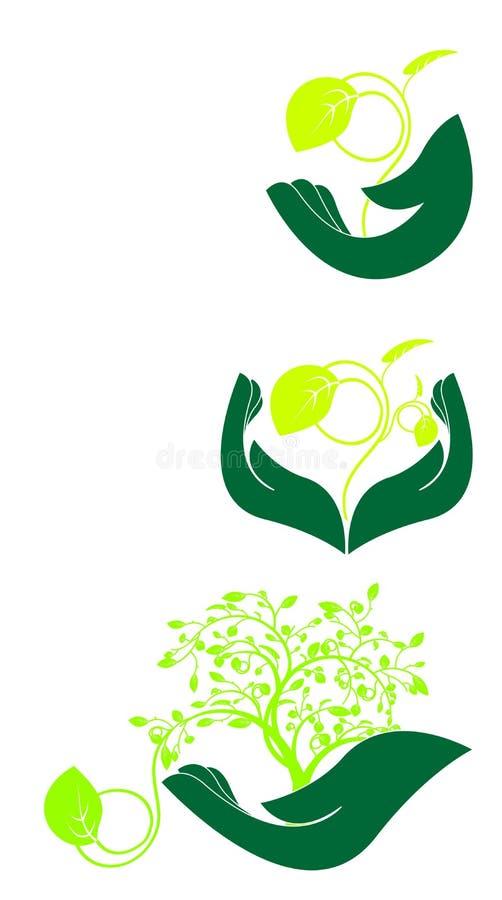 Mão floral ilustração royalty free