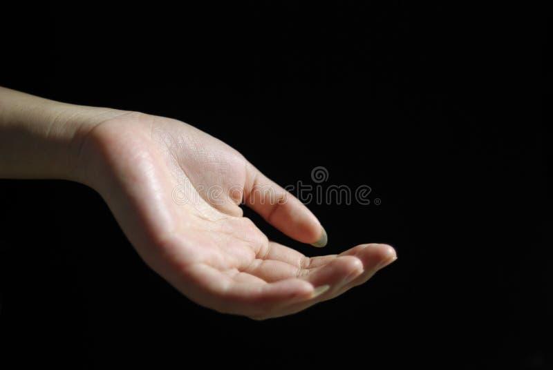 Mão graciosa imagem de stock