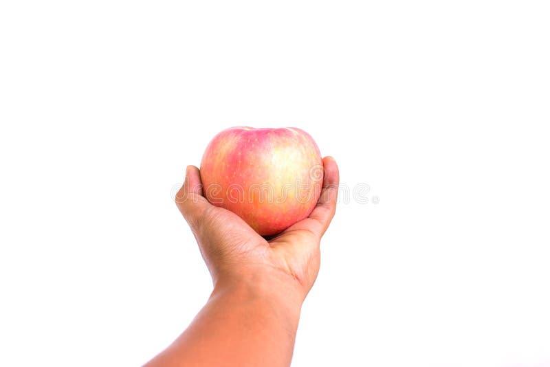 A mão guarda a maçã vermelha clara Apple frutifica no fundo branco bobina fotografia de stock royalty free