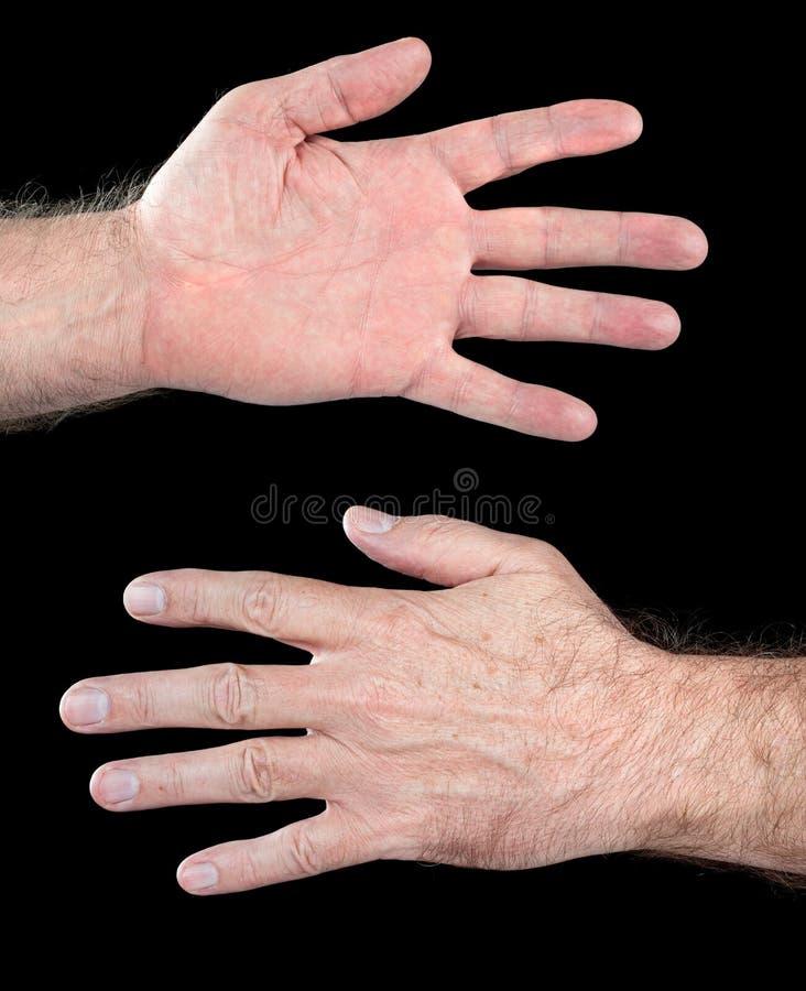 Mão humana masculina foto de stock royalty free