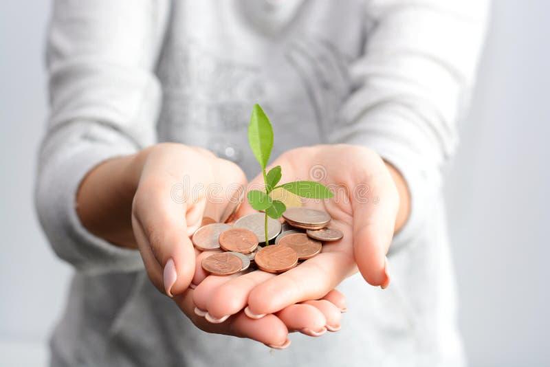 Mão humana que guarda moedas e uma planta crescente imagem de stock royalty free