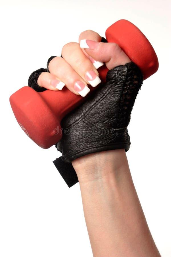 Mão isolada da mulher que prende um peso imagem de stock royalty free