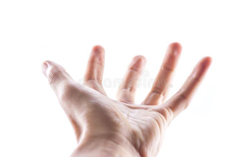 Mão isolada no fundo branco foto de stock