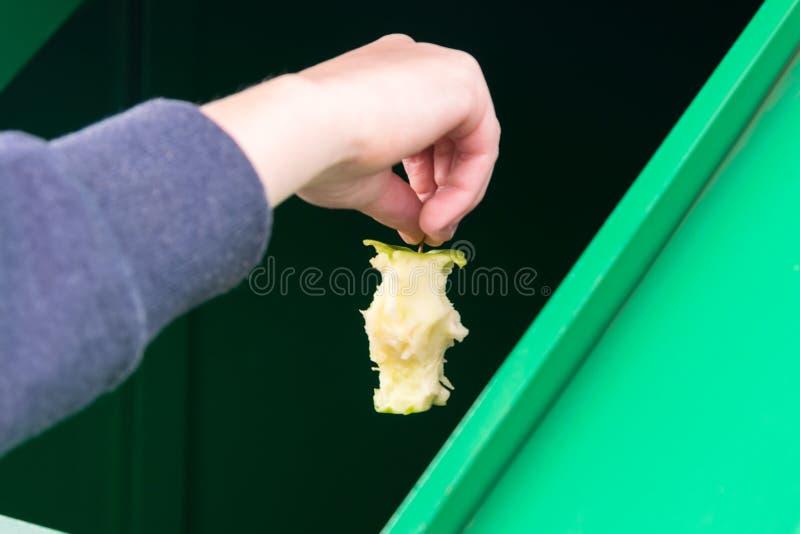 A mão joga uma parte de maçã no tanque do lixo, close-up fotos de stock