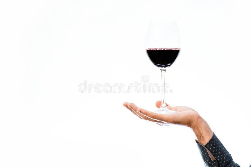 Mão masculina com vinho fotos de stock