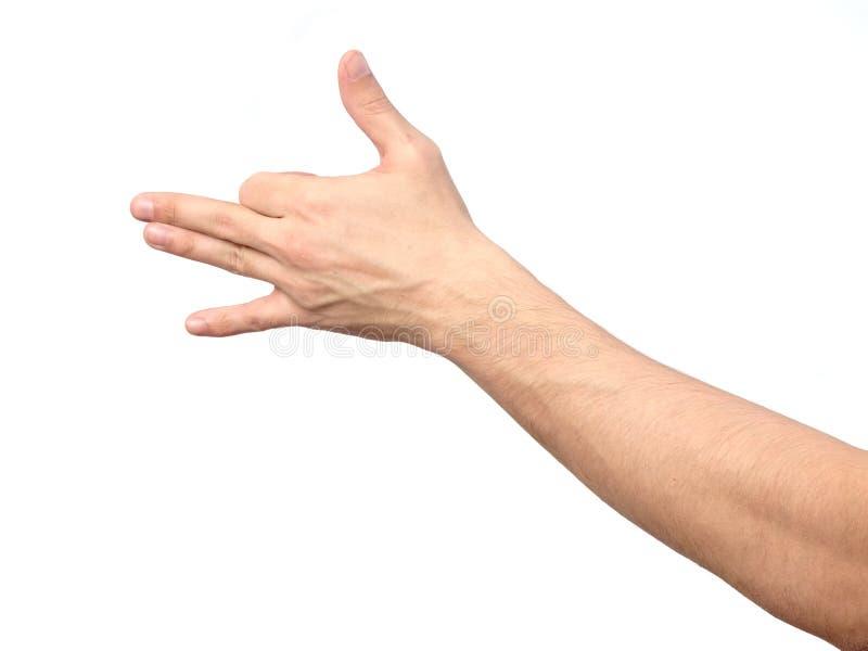 Mão masculina do gesto que indica a cara do cão isolada foto de stock royalty free