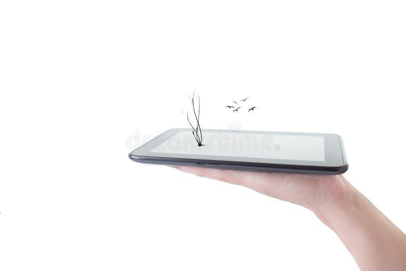 Mão masculina que guarda um PC da tabuleta com em branco fotos de stock