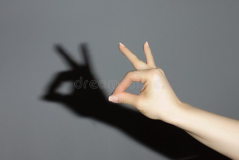 A mão mostra um coelho da sombra fotos de stock