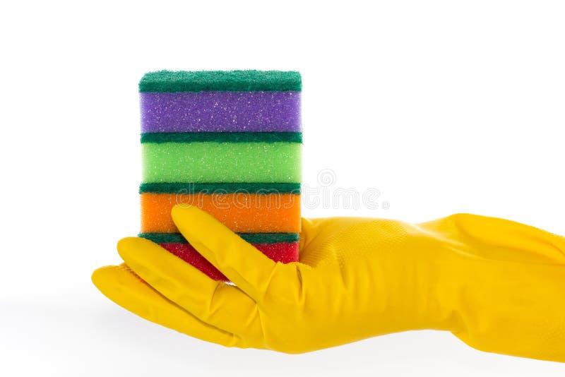A mão na luva de borracha prende esponjas da limpeza foto de stock