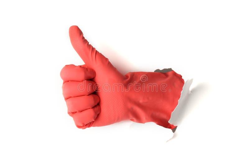 Mão na luva vermelha no fundo, nas tarefas domésticas e nos trabalhos domésticos brancos Servi?os da limpeza imagens de stock