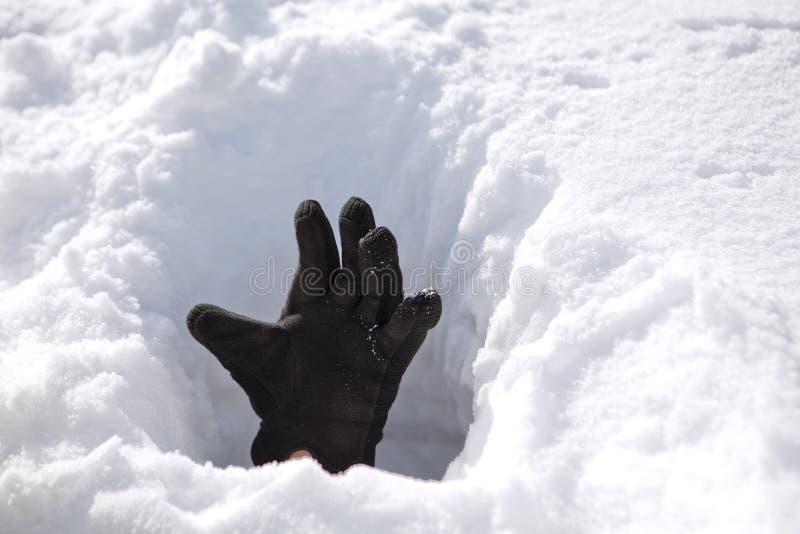 Mão na neve fotografia de stock